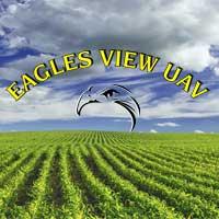 Eagles View UAV